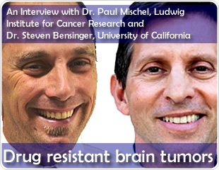 Drug resistant brain tumors: an interview with Prof. Mischel and Prof. Bensinger