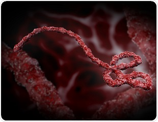 Experimental drug warrants clinical study for treatment of Ebola infection