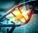 Illumina and IBM join forces to grow accessibility to genome data interpretation
