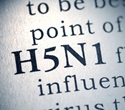 Researchers create new vaccine development method for H5N1, H7N9 strains of avian influenza