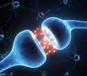 Male hormones can reverse biological drivers of aging, study shows
