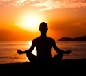 Mindfulness meditation reduces pain without endogenous opioid system
