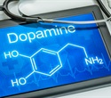 Heavy marijuana use may lead to lower dopamine release in the brain