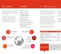 """Anemia and Hemoglobin Testing"" guide published by EKF Diagnostics"