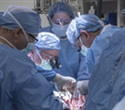 First US uterus transplant is successful