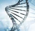 Some people may have youthful DNA despite old age, study shows