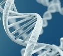 Researchers develop DNA-based nanomachine to detect variety of substances