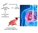 Research findings unveil new avenues to monitor, treat lung cancer more effectively