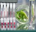 New MagSi-DNA Vegetal kit effective in extracting genomic DNA from plant tissue
